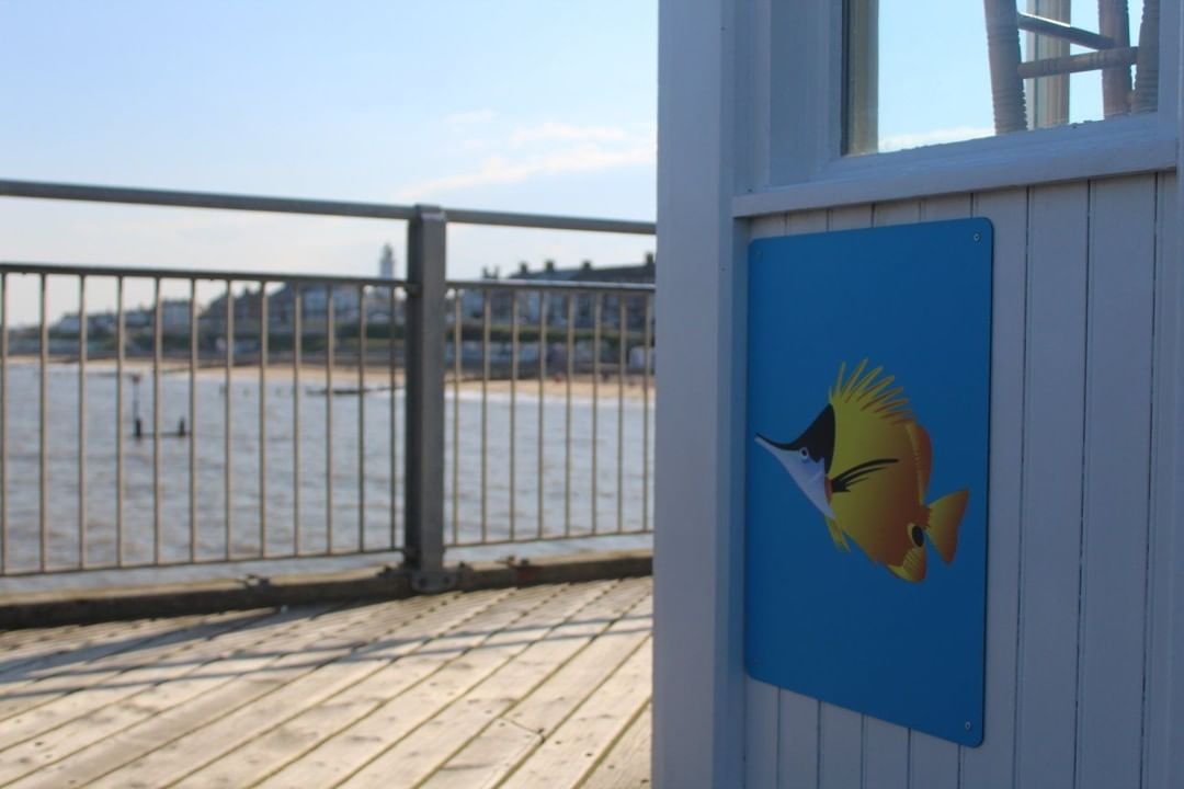 Have you completed the sea life trail…⠀ Find all sea life favourites around the pier for a free treat for the kids! 😁⠀ #suffolk #southwoldpier #southwold #sealifetrail