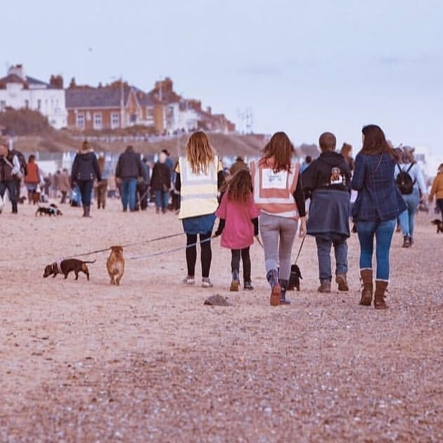The Southwold Sausage Walk is back on the 30th March and we couldn't be more excited to see them all return 🐾 🌊  Photo cred 📸 @southwoldsausagewalk